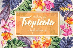 Tropicala