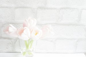Tulips Minimal Stock Photo