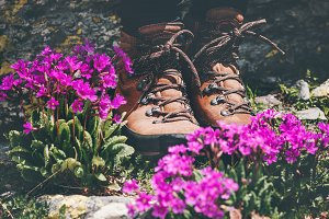 Feet trekking boots at pink flowers