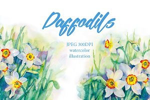 SALE! Watercolor daffodils flowers