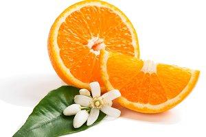 Orange fruit and blossom