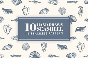 10 Hand Drawn Seashell + 5 Patterns
