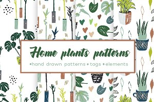 Pastel patterns with house plants