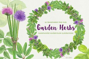 Herb Garden Watercolor Illustrations