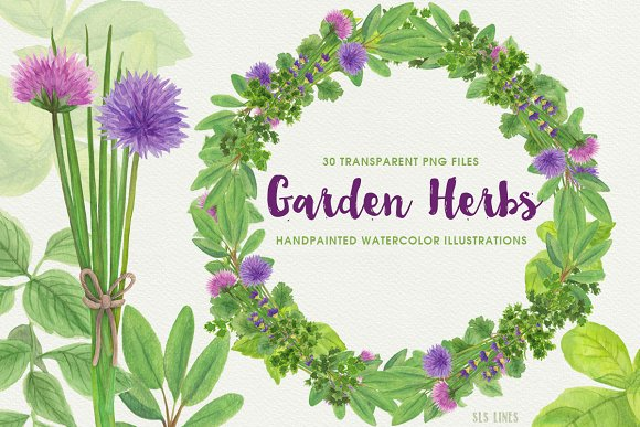 Herb Garden Watercolor Illustrations
