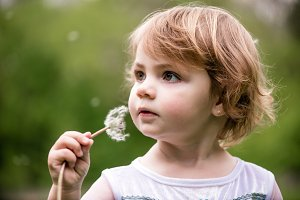 The little girl holding dandelion