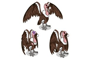 Three vultures, vector bird