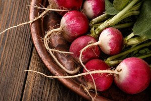 Fresh small red radishes