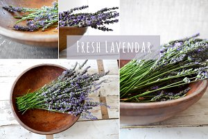 Fresh Lavendar Photo Mockup