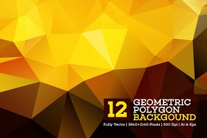 12 Geometric Polygon Background
