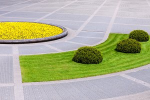 Landscaped urban square with plants