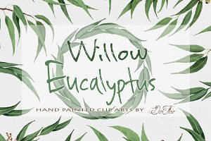Willow Eucalyptus Watercolor Clipart