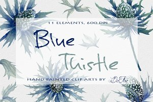 Blue Thistle Watercolor Clip Art