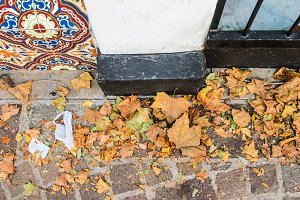 Leaves in a Cobblestone Floor