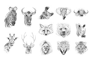 Portrait of wild animaldrawn by hand