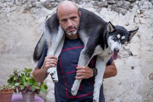 Man with husky dog on shoulders