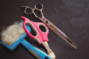 Scissors and pet hair removing tool in dog care center