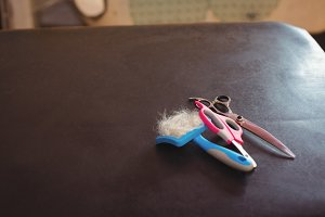 Scissors and pet hair removing tool on table