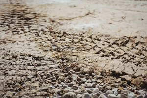 Bulldozer track on mud