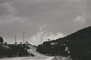 Winter Winds VI / 2014