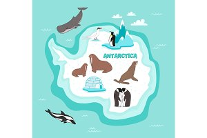 Antarctic continent map with wildlife animals