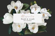 Magnolia flower clipart, magnolia wr