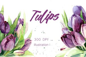 SALE! Watercolor tulips