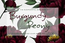 Burgundy Peony Watercolor Clipart