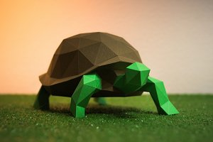 DIY Turtle 3D model template