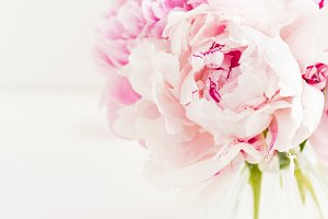 Fresh bunch of pink peonies