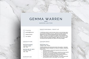 3 Page Resume Template | CV