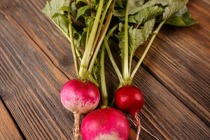 Freshly harvested red radishes