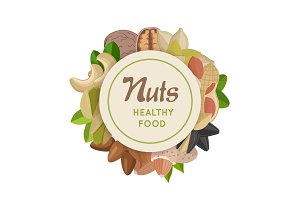 Nuts Healthy Food Concept Vector in Flat Design.