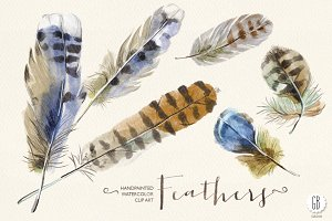 Watercolor feathers, handpainted