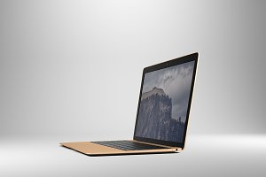 14x9 Laptop Screen Mockup - Gold