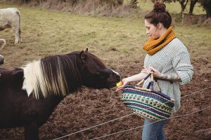 Woman with basket feeding a horse in field