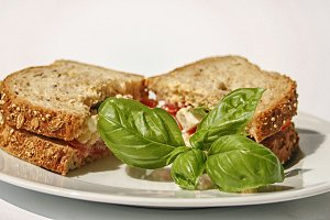 Sandwich with tomatoes and cheese