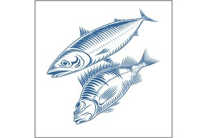 Fish set - sea bass, mackerel