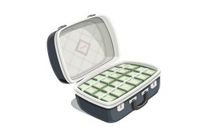 Black open briefcase with bundle of dollars