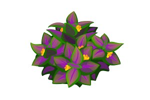 Unusual purple flower plant. Vector
