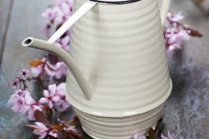 watering can and cherry blossoms