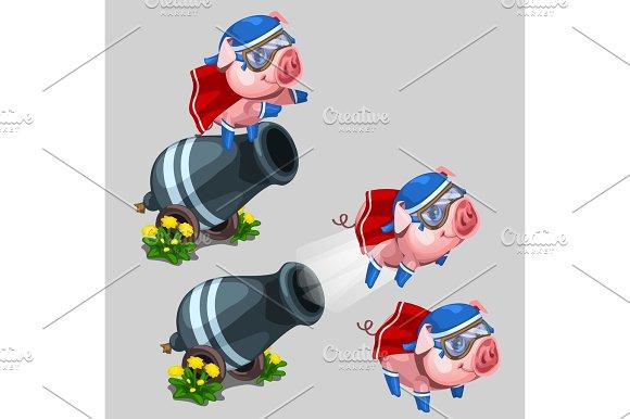 Circus Performance Gun Shoots A Pig