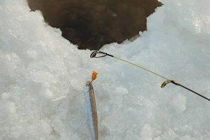 Fishing rod around ice hole