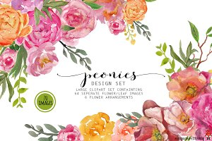 Peonies watercolor clipart
