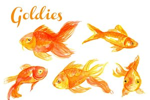 Watercolor Goldfish Illustration