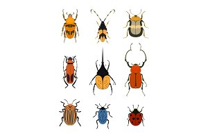 Bug icon set isolated on white