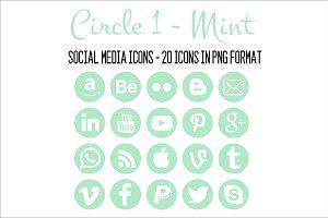 Social Media Icons - Mint