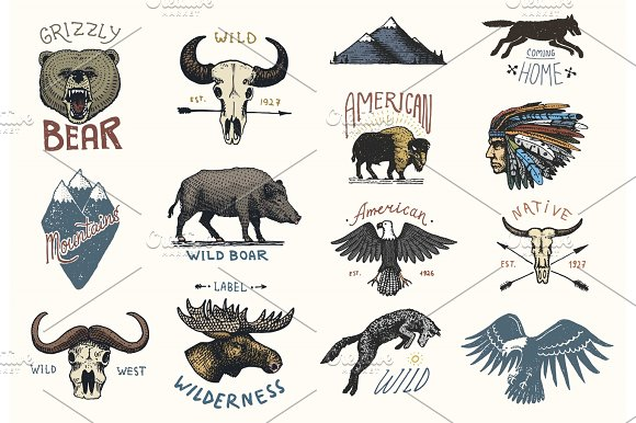 Set Of Engraved Vintage Hand Drawn Old Labels Or Badges For Camping Hiking Hunting With Boar Bear And Wolf Red Fox Skull And Bald Eagle Moose Face Indian Or Native American Buffalo
