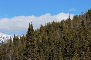Vail Mountain Panorama (Hi-Res!)