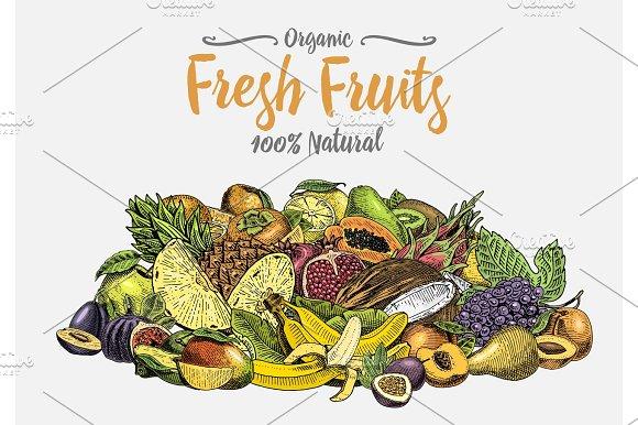 Vintage Hand Drawn Fresh Fruits Background Summer Plants Vegetarian And Organic Citrus And Other Engraved Pineapple Lemon Papaya Pitaya Maracuya And Bananas